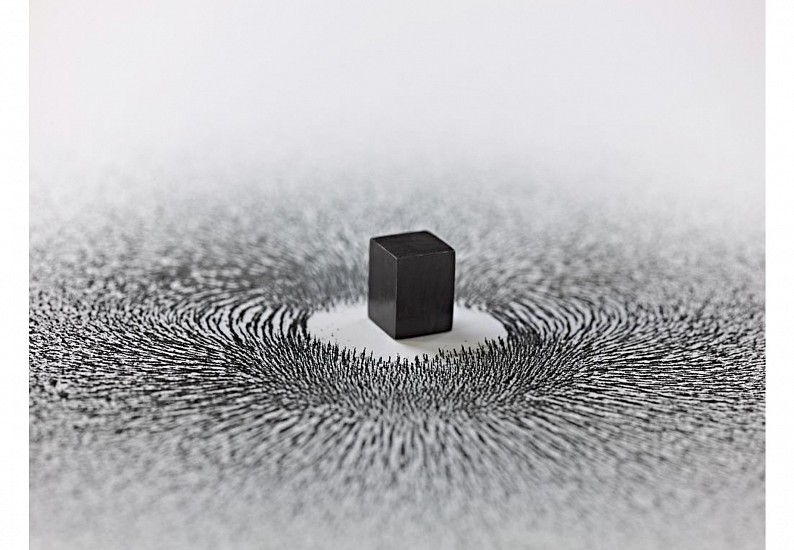 Ahmed Mater, Magnetism Installation 2009, Magnet and iron shavings
